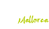 Independence Yachts