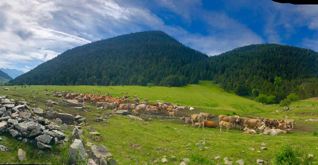 Paseo en ebike por Montgarri. Val d'Aran